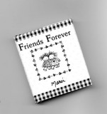 Mini Book-Friends Forever