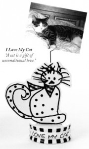 I love My Cat Photo Clip
