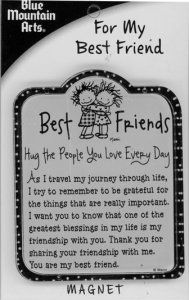 For My Best Friends Magnet